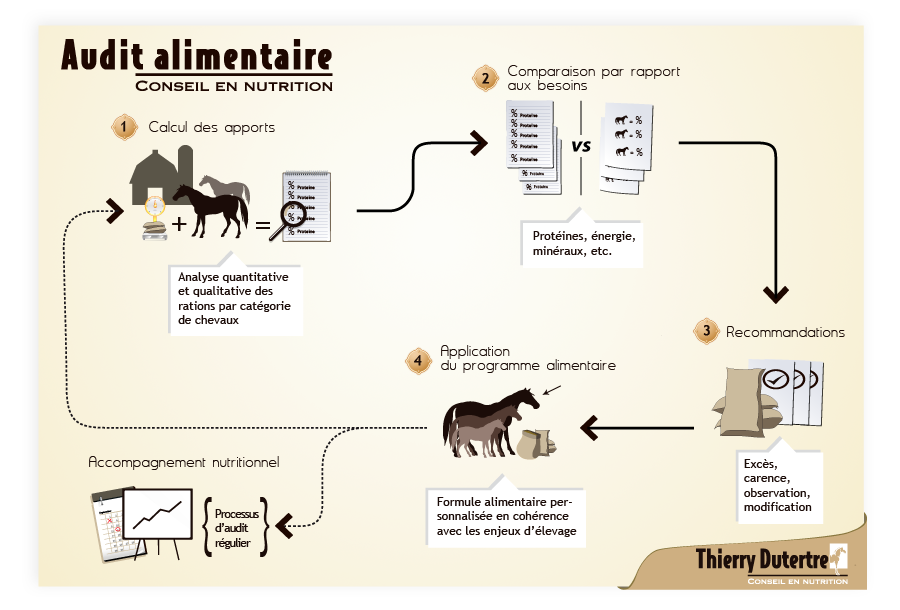 audit alimentaire chevaux